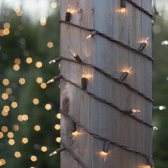 "100 Clear Christmas Tree Mini Lights, 4"" Spacing, Brown Wire"