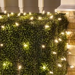 M5 4'x6' Warm White LED Net Lights, Green Wire