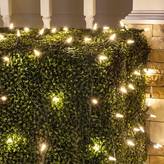 M5 4'x6' Warm White LED Net Lights, Green Wire