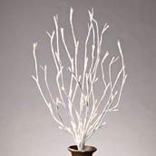 "20"" Battery Operated White Branch with Warm White LED Lights"