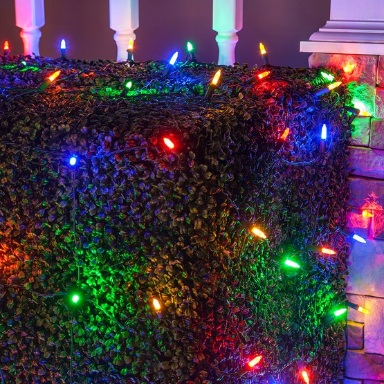 M5 4'x6' Multicolored LED Net Lights, Green Wire