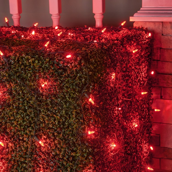 M5 4'x6' Red LED Net Lights, Green Wire