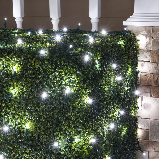 5MM 4'x6' Twinkle Pure White LED Net Lights, Green Wire