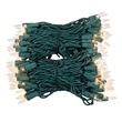 "Commercial 200 Clear Christmas Mini Lights, 4.5"" Spacing, Green Wire"