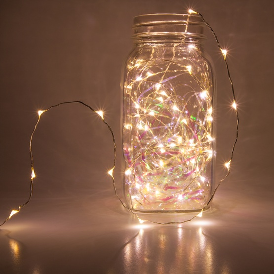 Novelty lights 10 warm white led fairy light string