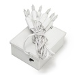 10 Clear Battery Powered Mini Christmas Lights, White Wire