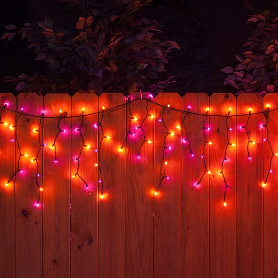 150 Purple / Orange Halloween Icicle Lights - Black Wire