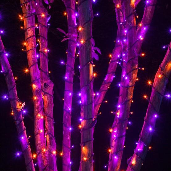 Purple Mini Christmas Lights