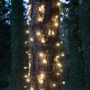 2' x 6' LED Trunk Wrap Lights - 100 Warm White Lamps - Brown Wire