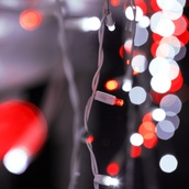70 5mm Red, Cool White LED Icicle Lights