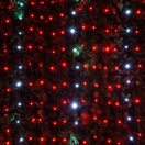 4' x 6' LED Net Lights - 100 Twinkle Red, Cool White Lamps - Green Wire