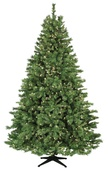 6.5' Full Pre-Lit Cumberland Fir, 500 Clear Lamps