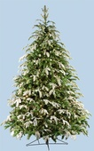 7.5' Full Fraser Fir Tree, Flocked, 900 Clear Lamps