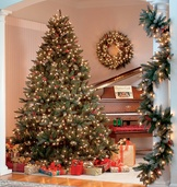 7.5' Full Pre-Lit Hawthorne Fir Tree, 1100 Clear Lamps