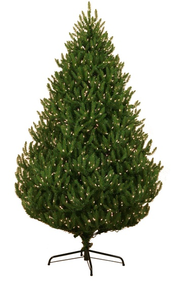 7.5' Pre-Lit Norway Spruce Tree, 1350 Clear Lights