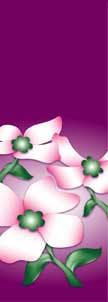 "Dogwood Flowers on Purple Background Light Pole Banner 30"" x 96"""