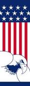 "Flag and Eagle Light Pole Banner 30"" x 84"""