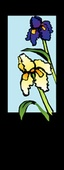 "Iris Junior Light Pole Banner 17"" x 41"""