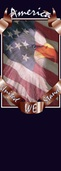 """United We Stand Light Pole Banner 30"""" x 60"""""""