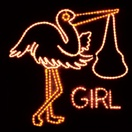 It's A Girl Rope Light Motif