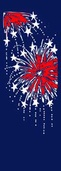 "Fireworks Light Pole Banner 30"" x 94"""