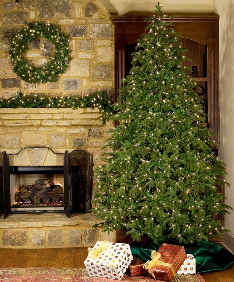 9' Fraser Fir LED Tree - 1000 Warm White Bulbs