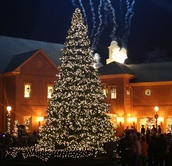 17' Full Pre-Lit Giant Everest Fir Tree, 5180 Clear Lamps