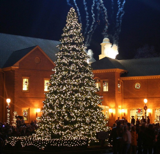 32' Giant Everest Commercial Christmas Tree, 5mm Warm White LED Lights