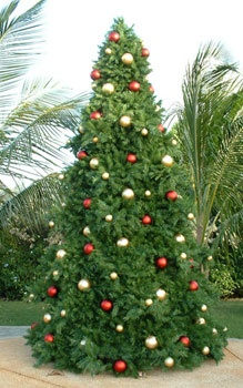 14' Full Pre-Lit Giant Everest Fir Tree, 3640 Clear Lamps