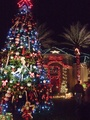 17' Full Pre-Lit Giant Everest Fir Tree, 888 C7 LED Clear Lamps