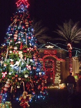 35' Giant Everest Commercial Christmas Tree, C7 Multicolor Lights