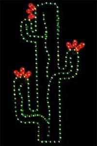 3' Blooming Cactus
