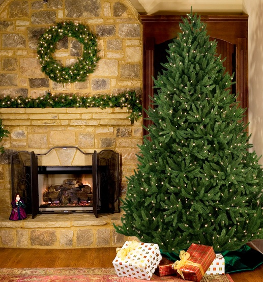14' Full Pre-lit Noble Fir Tree, 2500 Warm White LED Lights