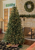 9.5' Full Pre-Lit Tiffany Tree, 1350 Warm White LED Lamps