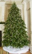 7.5' Medium Pre-Lit Brighton Fir Tree, 950 Multicolored Lamps