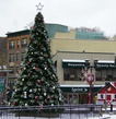 35' Giant Everest Commercial Christmas Tree, C7 Clear Lights