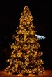 17' Giant Everest Commercial Christmas Tree, Mini Clear Lights
