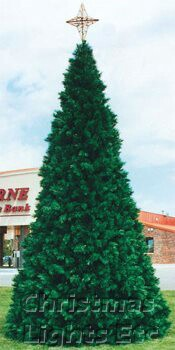 16' Northwoods Pine Tree, C7 Clear Lights