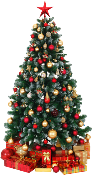 there was an error processing your signup - Pictures Of Pretty Decorated Christmas Trees
