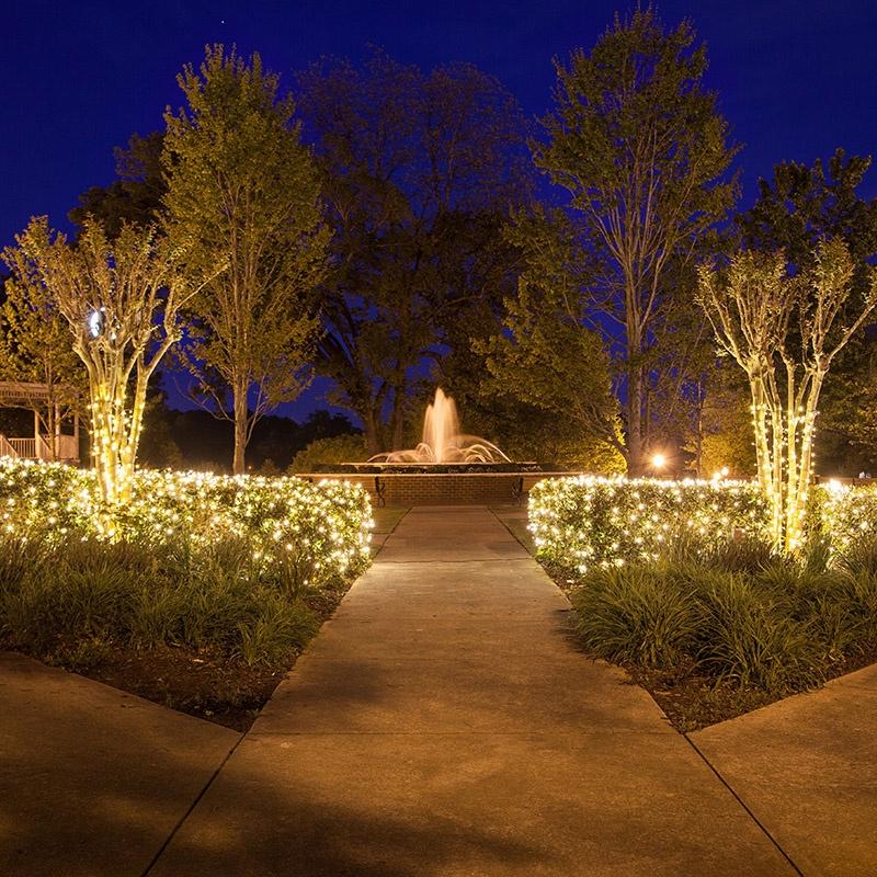 almost nature home decor custom desgned artfcal trees.htm net lights installation guide  net lights installation guide