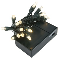 Battery Operated Warm White 5mm LED lights