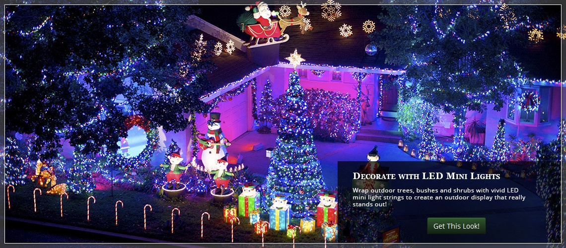 Wrap trees, bushes and shrubs with mini Christmas lights