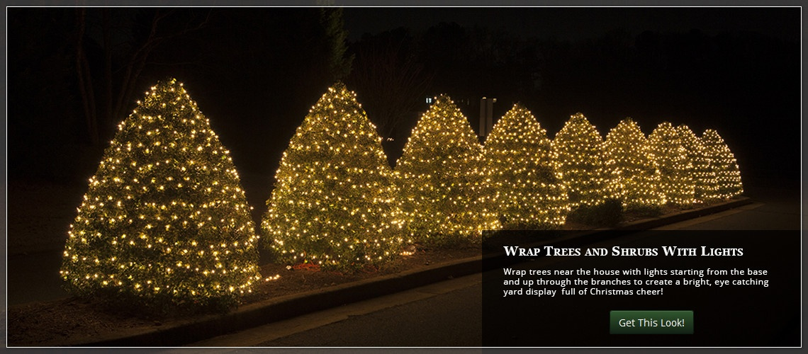 a large outdoor tree wrap bushes and shrubs with christmas lights