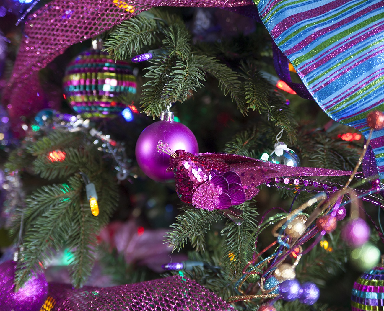 colorful kids christmas tree ornaments - Pictures Of Purple Decorated Christmas Trees
