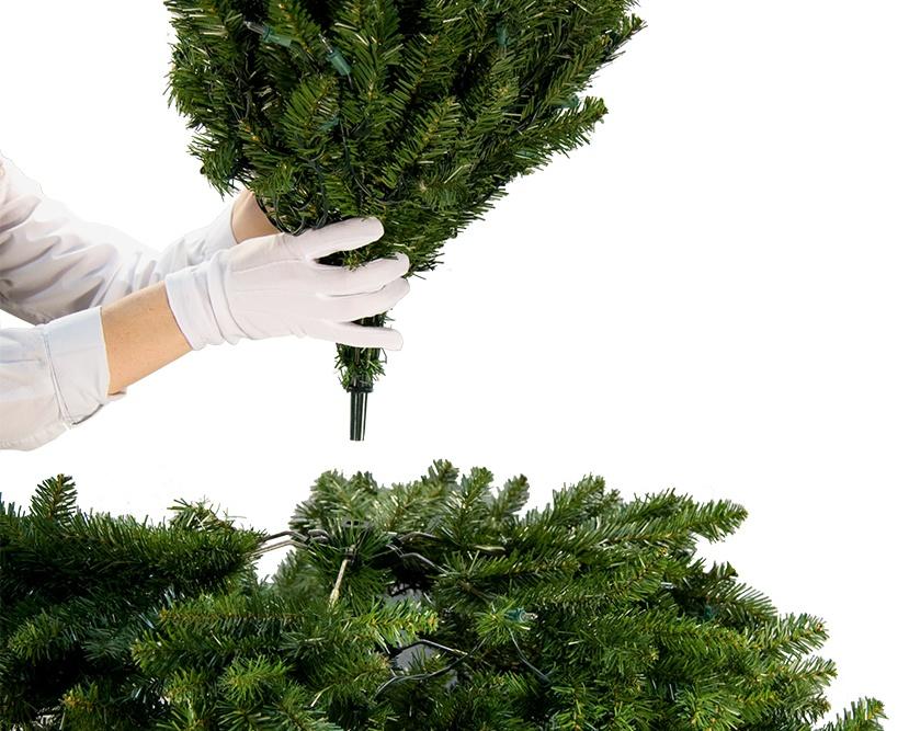 placing-tree-top-D.jpg
