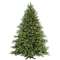 Carolina Fir Prelit Christmas Tree