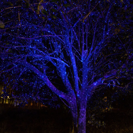 blue-laser-lights-trees-0796.jpg