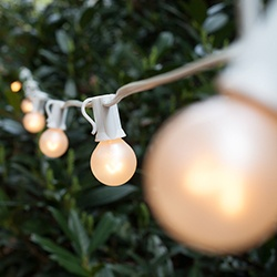 g30 pearl white globe lights on white wire