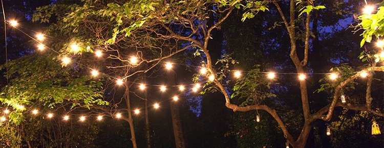 Patio string lights and bulbs patio lights hanging across backyard trees mozeypictures Gallery