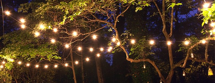 Outdoor Lighting Trees Patio string lights and bulbs patio lights hanging across backyard trees workwithnaturefo